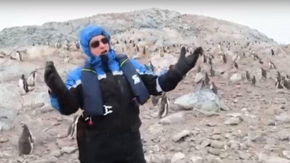 【影片】到南極「高歌」! 歌劇新星 讓企鵝「驚呆」了