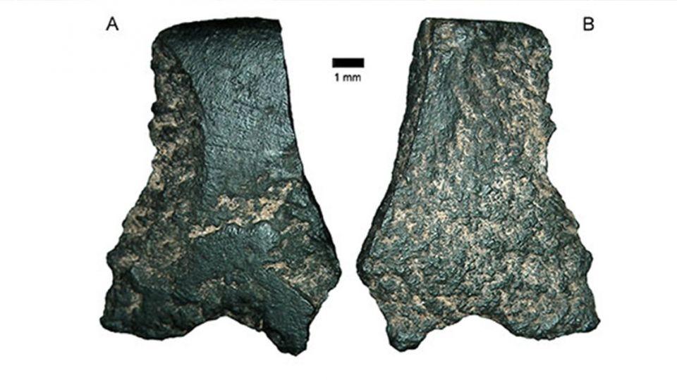 【影片】深埋4.9萬年!指甲般石片 竟是最古老斧頭遺骸
