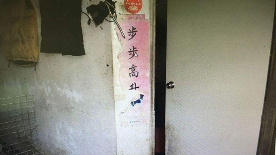 獨居男陳屍家中6天 手腳遭16隻愛犬啃食見骨