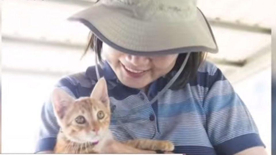 蔡英文領養3退役導盲犬 官邸「貓狗大戰」將開打?