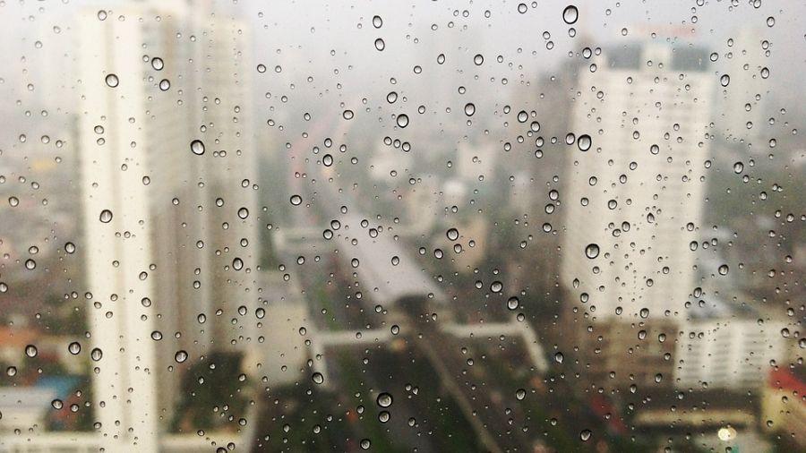 【影片】全台有雨要帶傘 高溫30度感覺悶