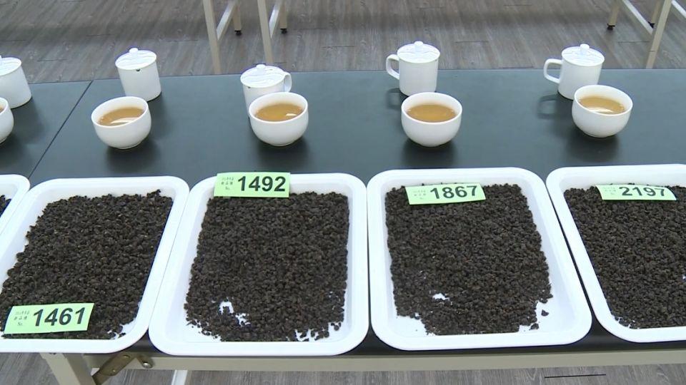 年逾億元商機  凍頂茶比賽茶爆進口茶混充