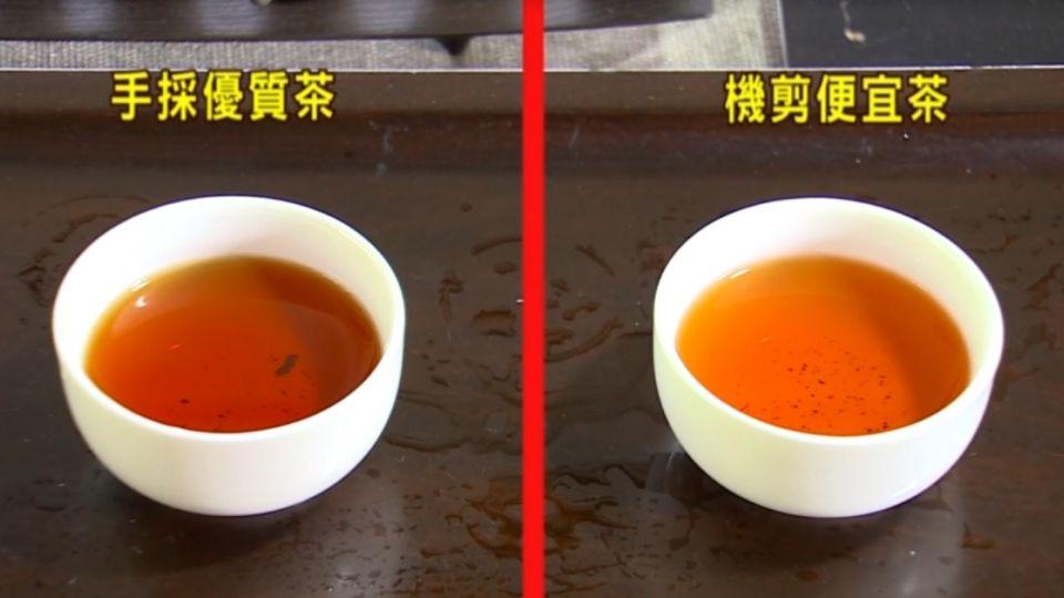 得獎是好茶? 茶農爆料:也有混充進口的