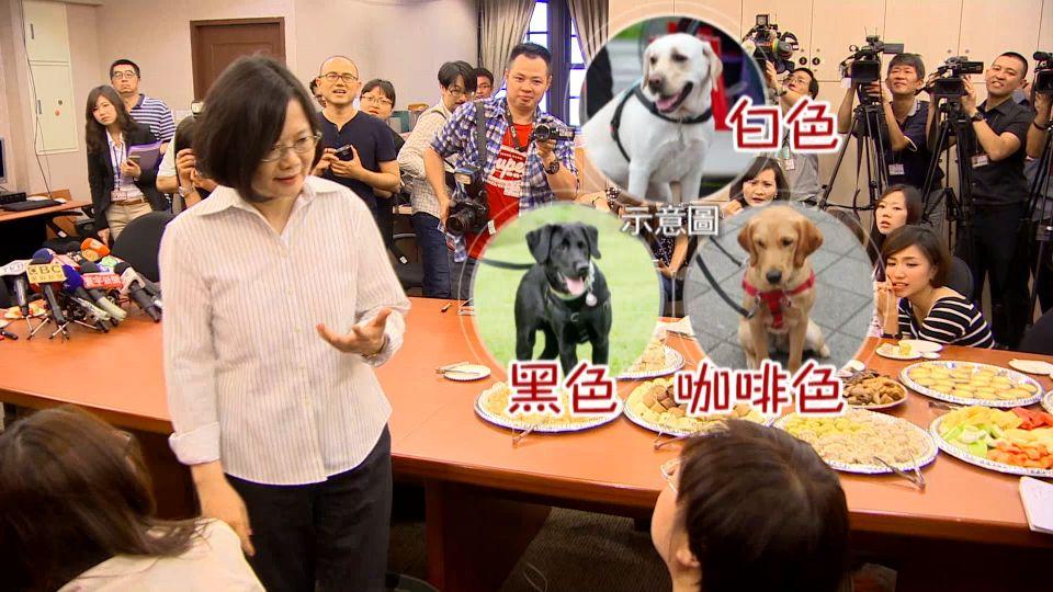「白、黑、咖啡」 第一家庭將加入3隻導盲犬成員