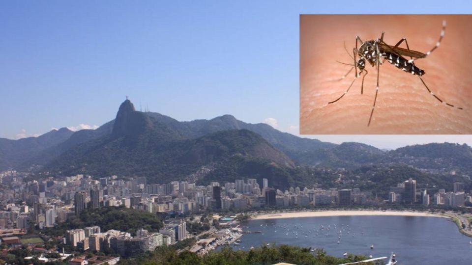 病毒危機?耶魯專家:巴西奧運登場 茲卡病毒恐散播全球