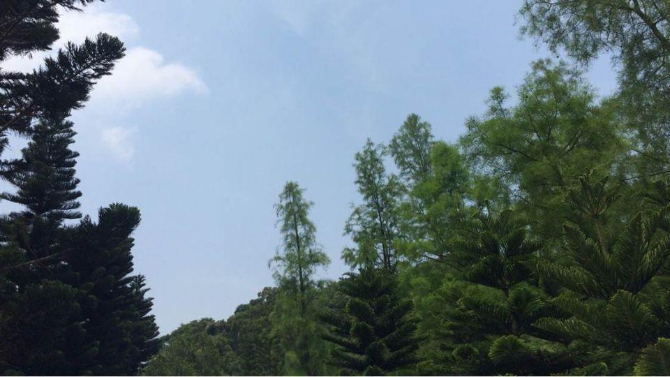 【影片】高壓增強!明全台晴朗炎熱 恐達36度高溫