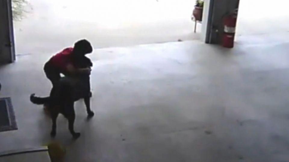 美男童溜進鄰居車庫 竟只是為了...