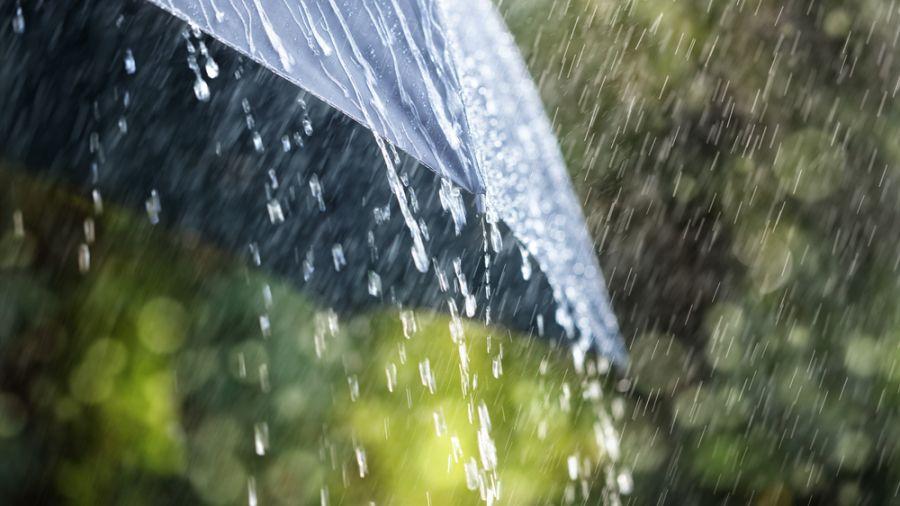 雨神發威!全台都會溼答答 嚴防瞬間強降雨