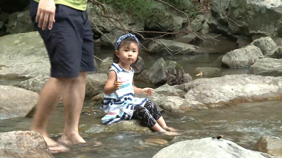 夏日清涼遊! 秘境瀑布戲水 農場溪邊下午茶