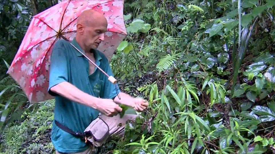 三餐吃川七! 55歲老外秘住深山20年