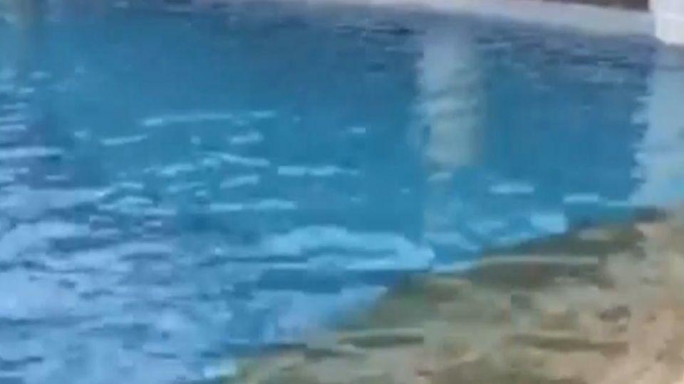 戲水喪命! 夏都飯店泳池驚傳四歲男童溺斃