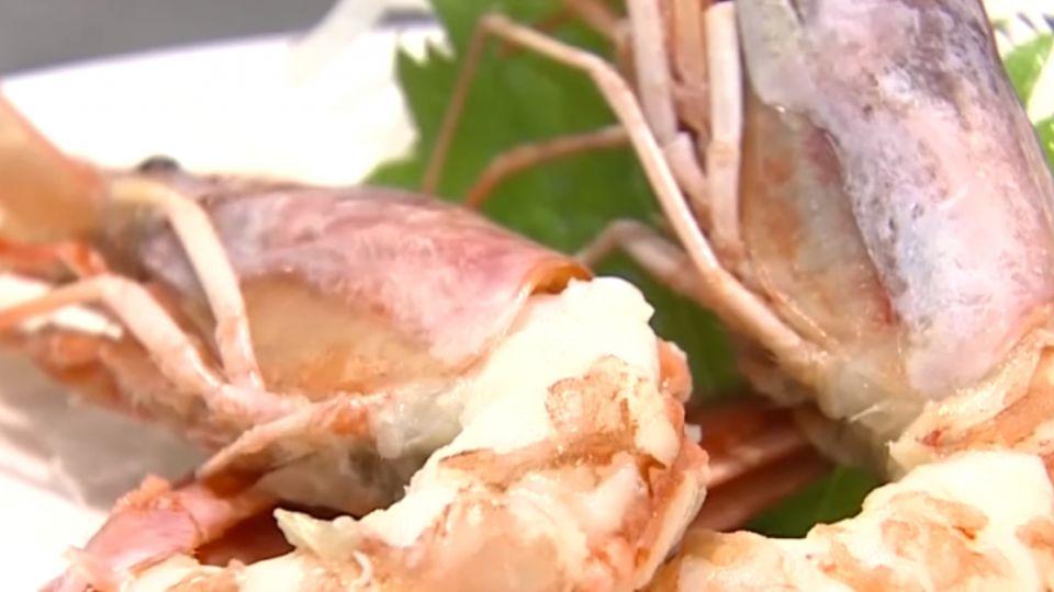 非不新鮮!紅蝦適合「生食」 煮後蝦肉鬆軟