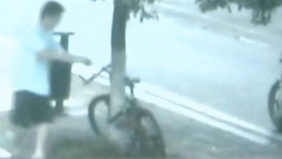 為了一輛腳踏車 陸男竟「鋸樹」偷車