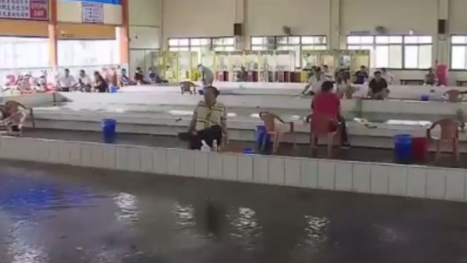 泰國蝦不能吃?! 網路PO文熱議、業者闢謠