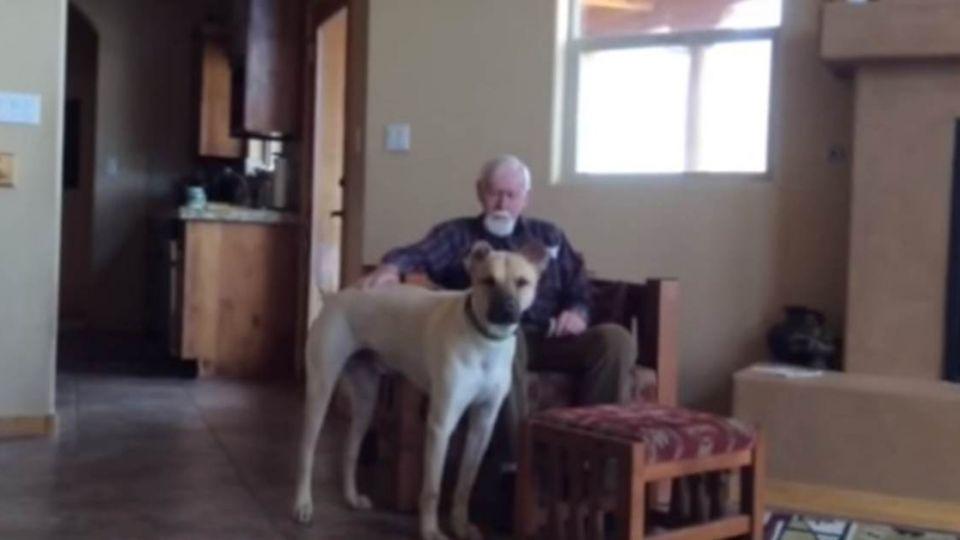 狗狗陪伴阿茲海默父玩 「一句話」讓女兒瞬間淚崩