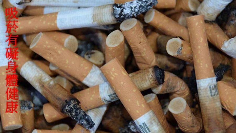 菸價確定調漲 國健署長:10月底修法