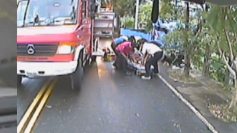 樹倒擊中小貨車  52歲檳榔農重傷昏迷