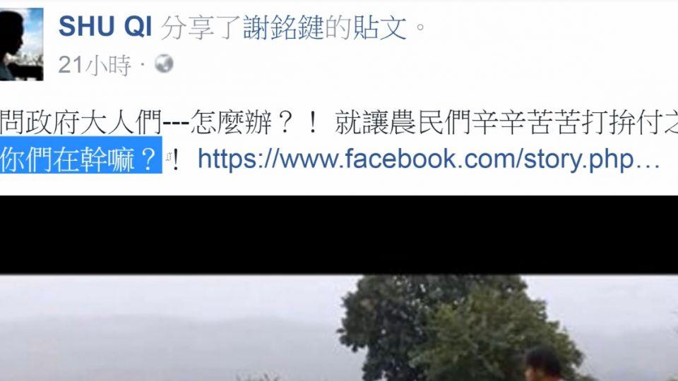 舒淇婚後首回台 臉書批評政府「救災不力」