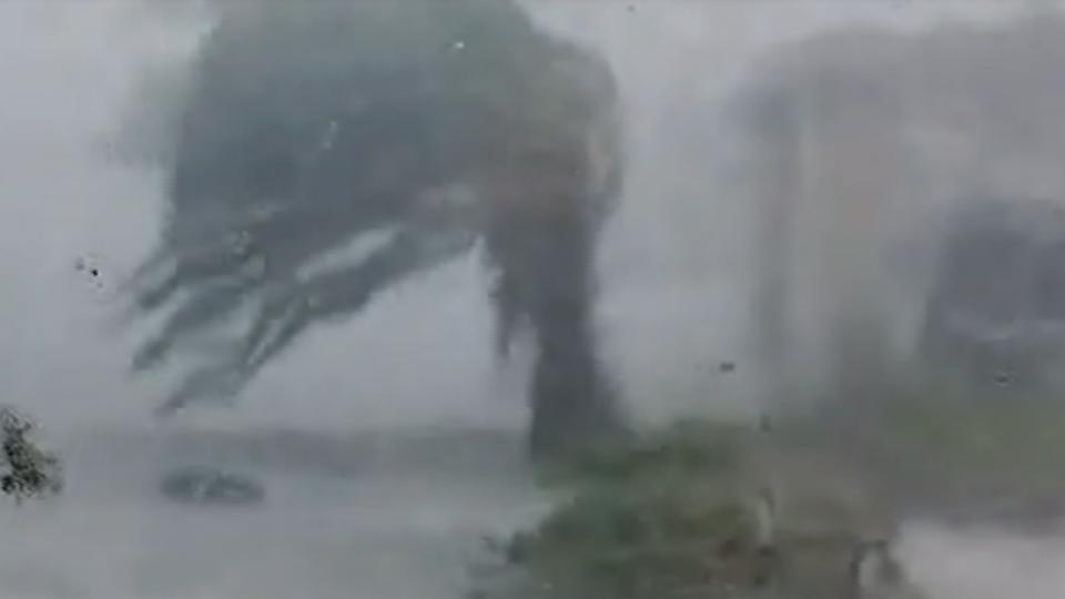 花蓮市登陸 暴風圈罩全台 強風豪雨中