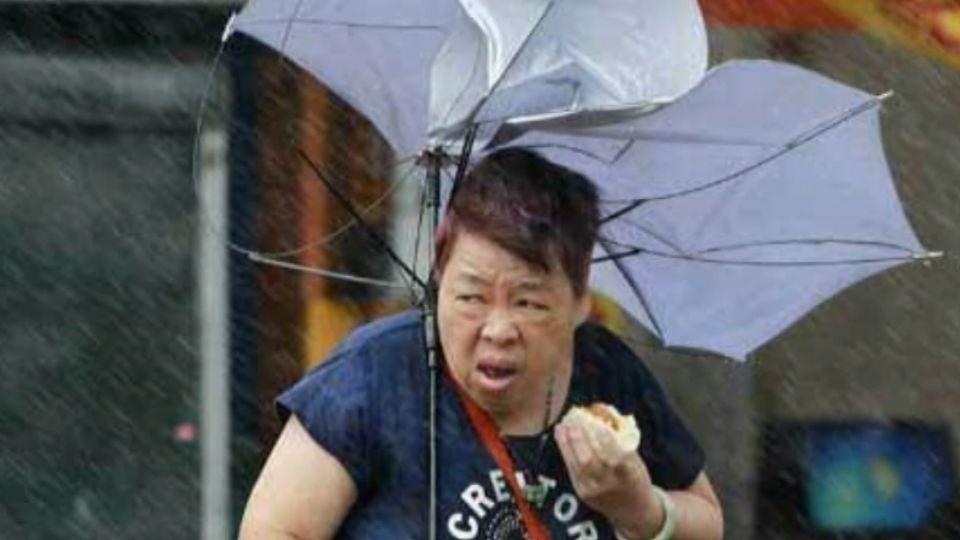 台灣大媽登華爾街日報!「傘開花照吃肉包」