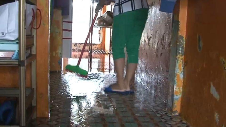 颱風過後...客廳地板魚在游 枋寮新龍村泡水中