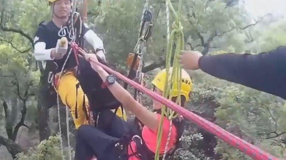 被打槍二次! 消防員攀20公尺大樹求婚成功