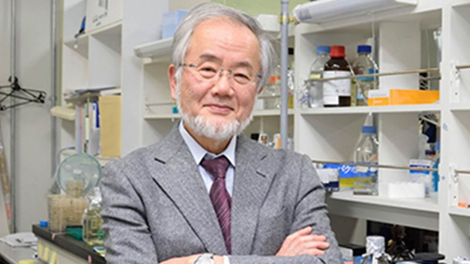 研究細胞自噬 日本學者大隅良典獲諾貝爾醫學獎