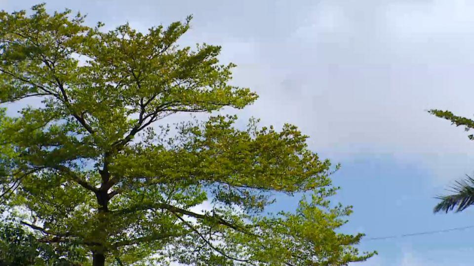 「海馬」南偏不發海警 明起花東-恆春防豪雨