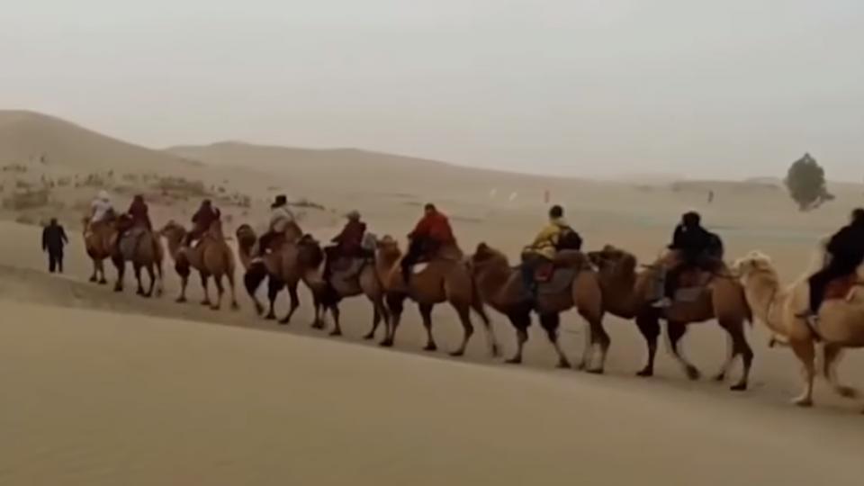 花6萬遊新疆 晚餐摸黑、沙漠露營帳棚被吹走
