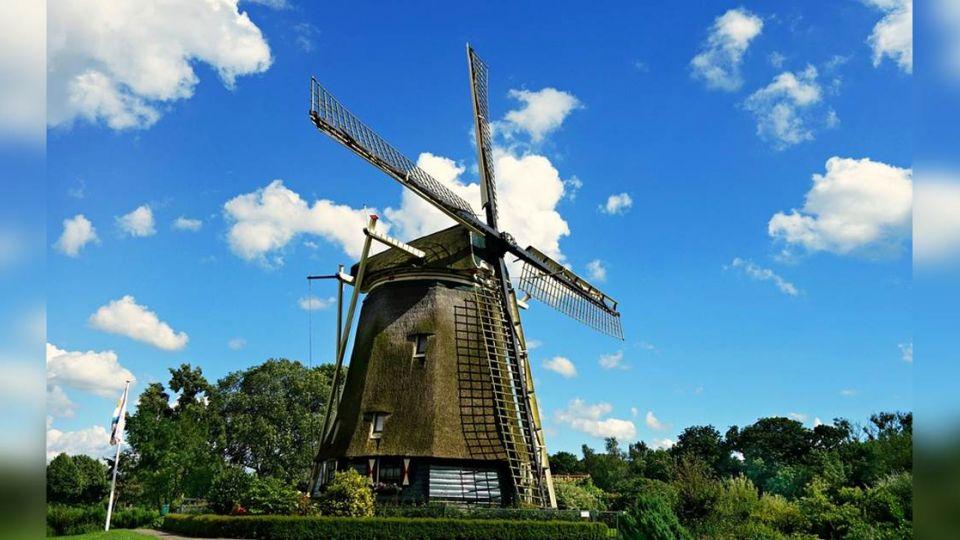 台灣想學荷蘭高民主高福利   7件事告訴你不可能