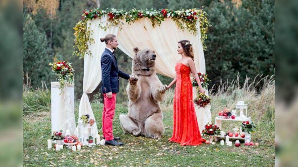 【圖集】重量級嘉賓!俄國新人婚禮 竟邀130公斤大棕熊夢幻證婚
