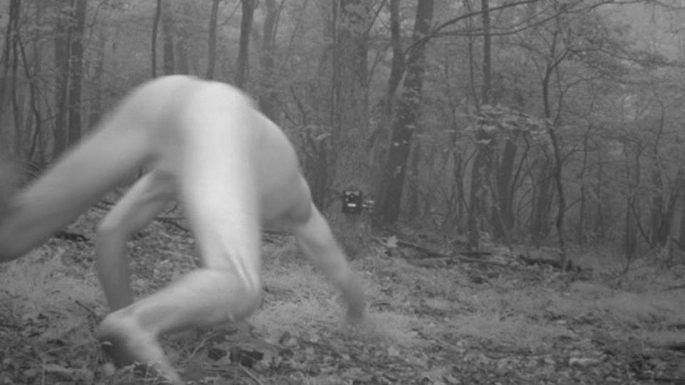森林之王!?「全裸野人」現身鏡頭 教授嘆:不是唯一見證人