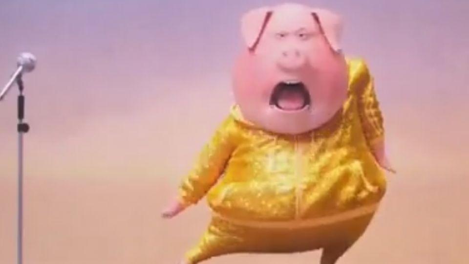 動畫版「美國好聲音」 動物報名歌唱選秀