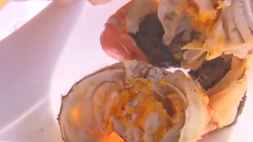 大閘蟹代客料理蒸不熟? 問題出在蟹膏
