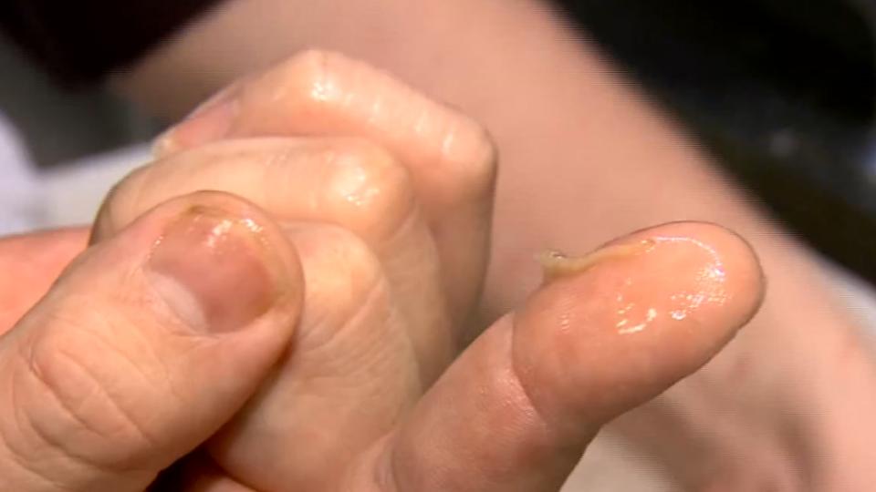蛤蠣湯有「寄生蟲」? 名店打臉:是消化器官