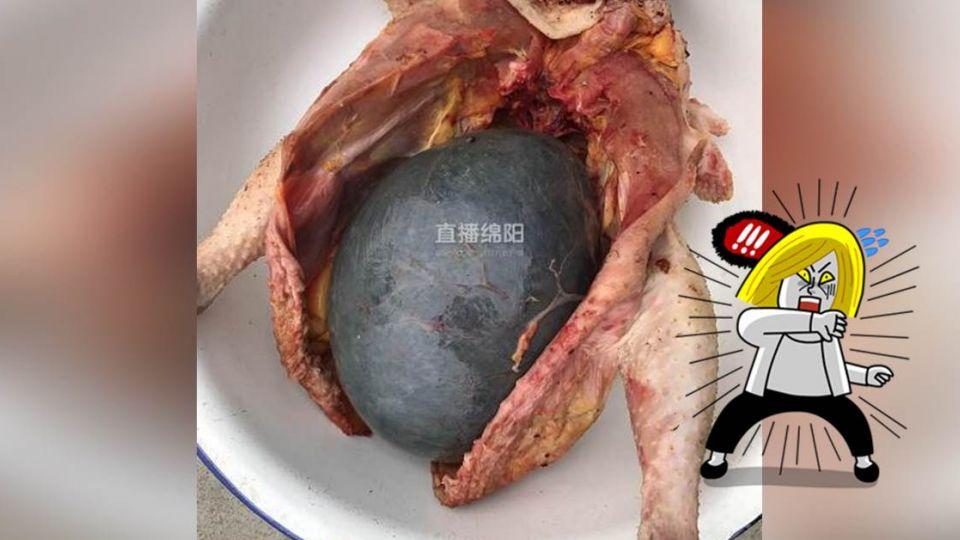 婦養雞3年想燉湯 剖肚驚見柚子般「黑色巨蛋」胃口全失