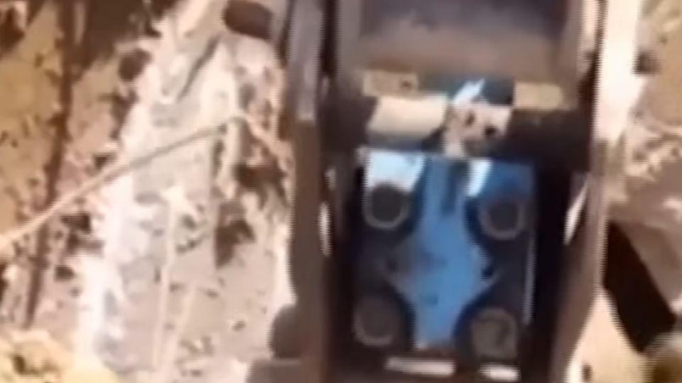 嚇!土耳其工人施工鑿出巨洞 驚見大棕熊竄出