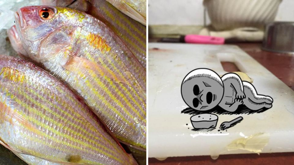 金線魚嘴裡驚見詭異生物!竟把「魚舌頭」吸光光