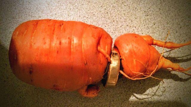 結婚50年特別禮物!遺失三年 亡妻婚戒在「蘿蔔」上找回