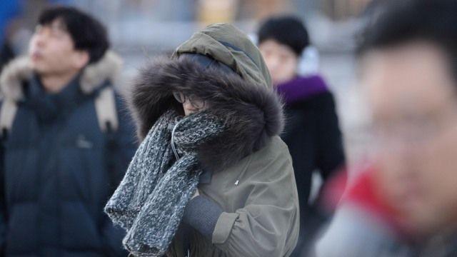 【更新】今晚開始急凍!入冬最強冷氣團 連5天全台低溫探10°C