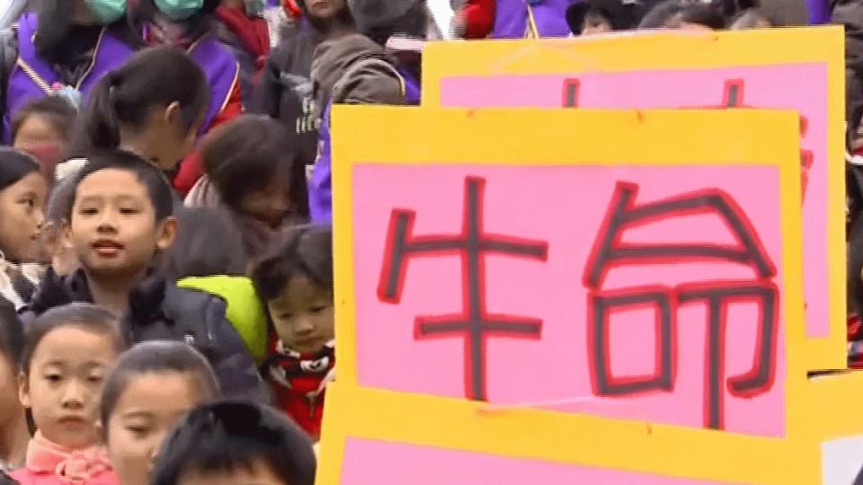 風水房價勝安全? 攝影熱點陸橋擬拆 小學生抗議