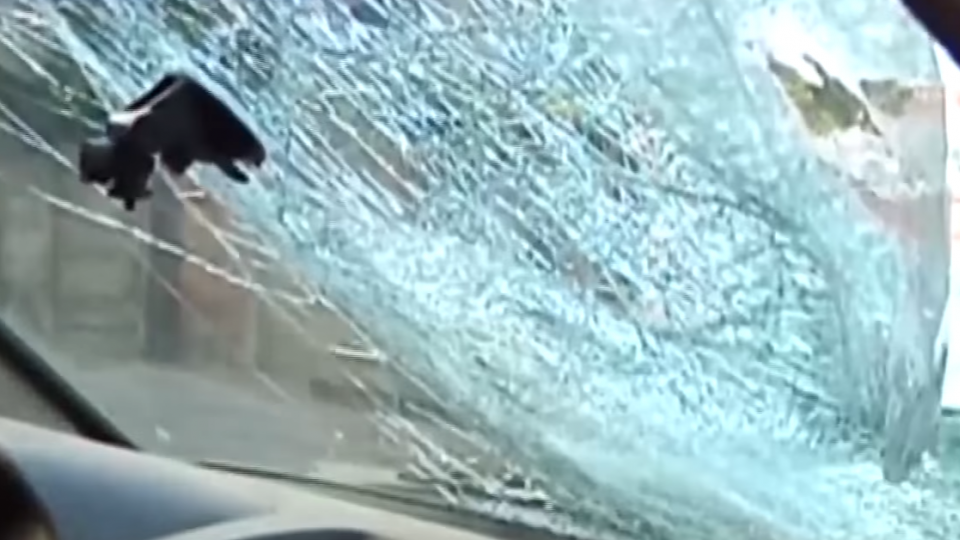 天外飛來橫禍!國道殺手:輪胎、鐵條、塑膠