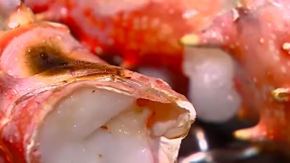 海鮮吃到飽 「天使紅蝦」吃5盤回本8成