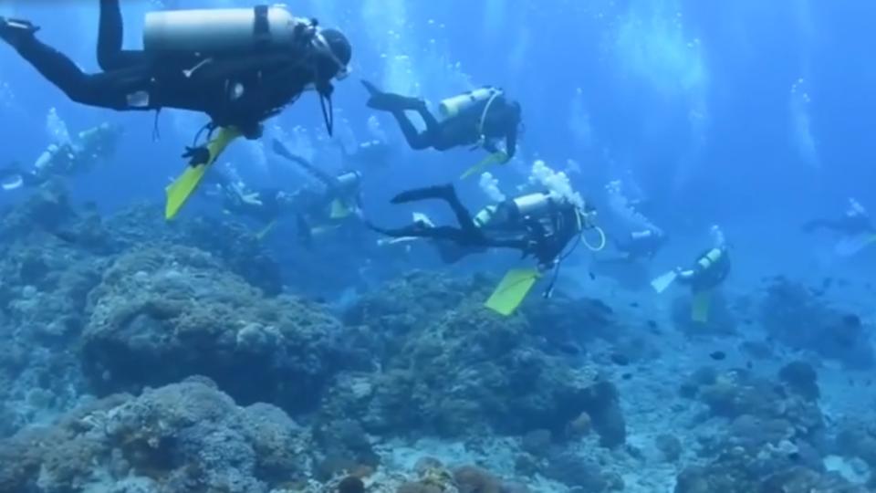 蘭嶼飛魚季禁潛水 觀光業者反彈:怎做生意?