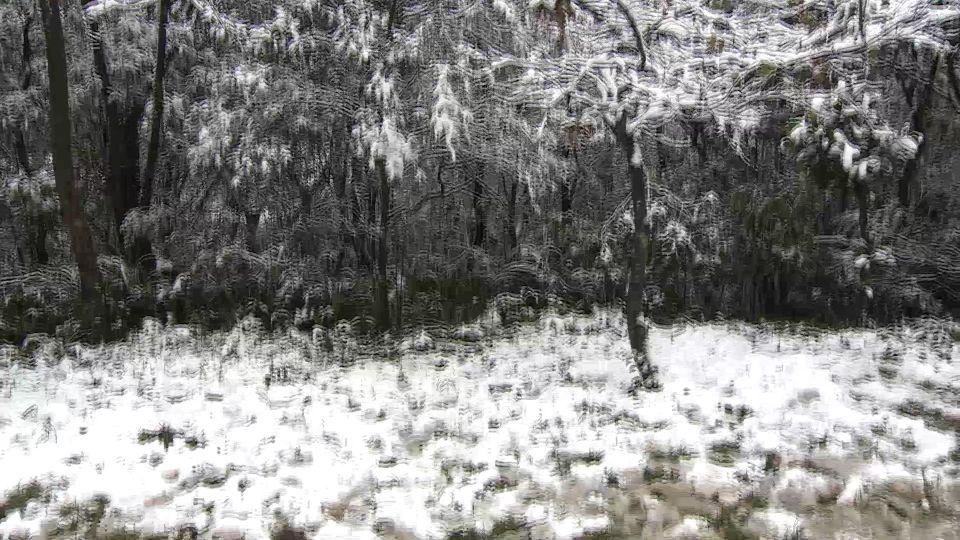 228濕冷天!北部下探11度 高山下雪機率高