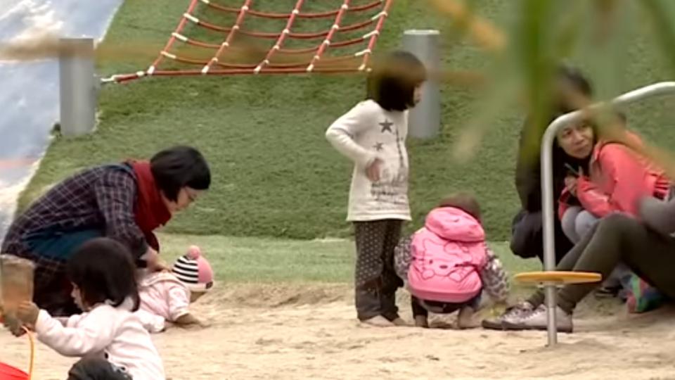 造福身障兒童 花博公園將造「共融式遊樂園」