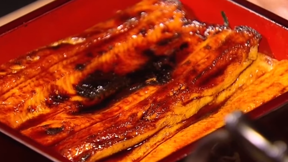 鰻魚料理東西軍! 關東味綿密、關西酥脆