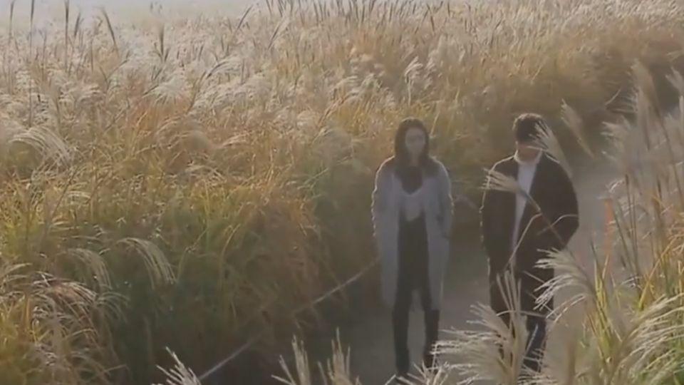 韓劇「相愛相殺」橋段 觀眾喊過癮收視保證