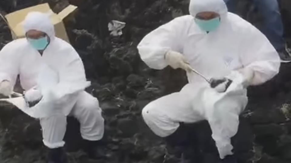綠島海岸遭重油「毀容」 環保署鎖定一貨輪