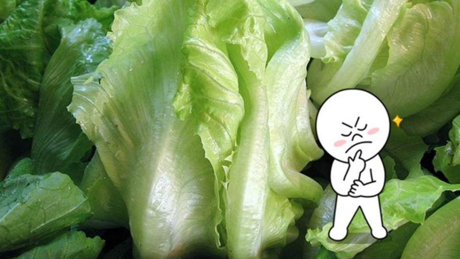 為什麼這種菜要叫「大陸妹」?神人正解網友驚:蔬菜系4ni